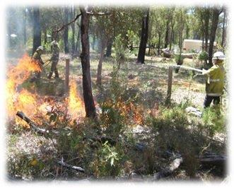 Bushfire Controlled Burning