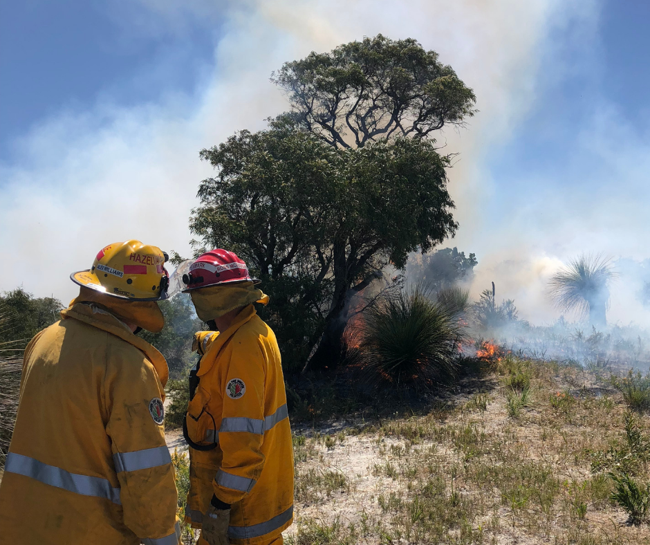 Shire gets funding for a more bushfire-resilient Denmark