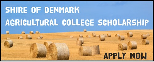 Agricultural College Scholarship